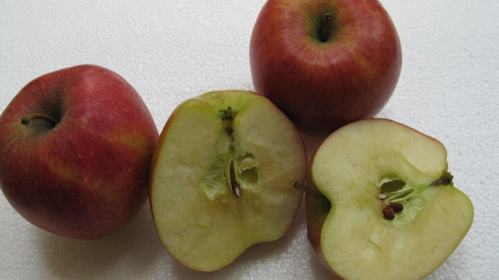 "apples"""